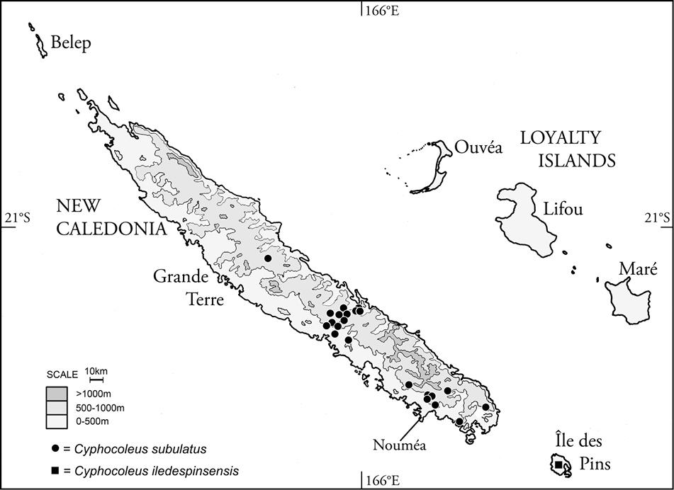 ebook Remote Sensing of Large Wildfires: in the European Mediterranean Basin